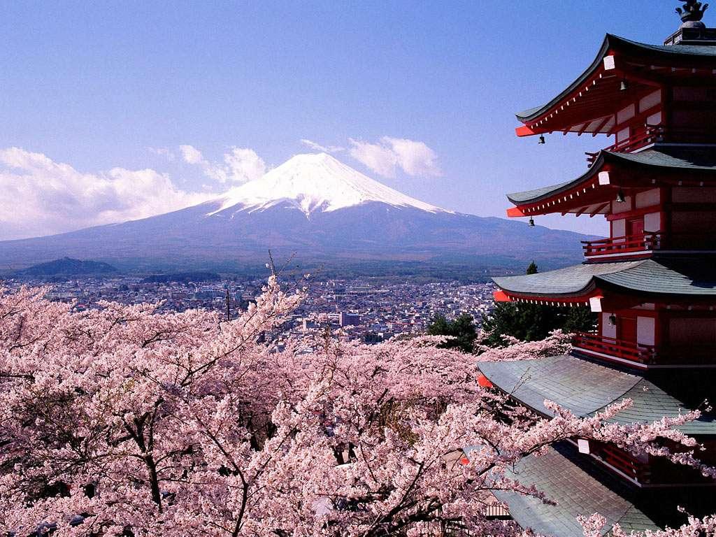 ACAD - Activités culturelles Japonais