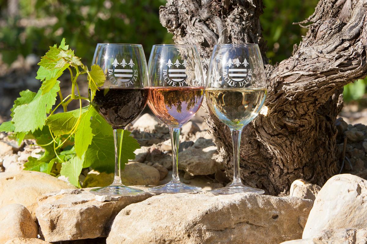ACAD - Activité Atelier de dégustation de vins