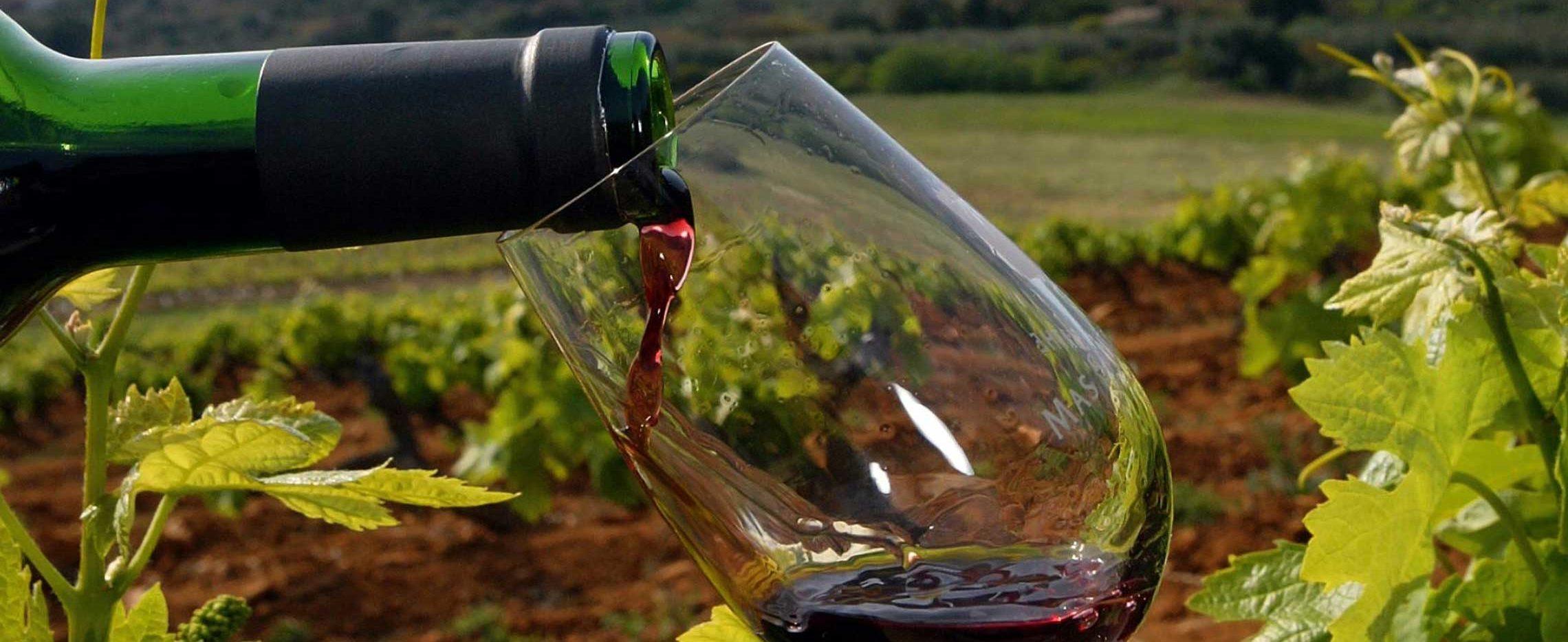ACAD - Activités culturelles Atelier de dégustation de vins