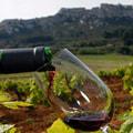 Atelier de dégustation de vin annulé
